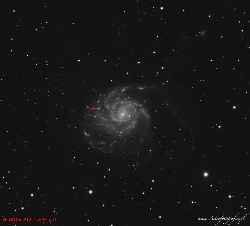 Supernowa w M101