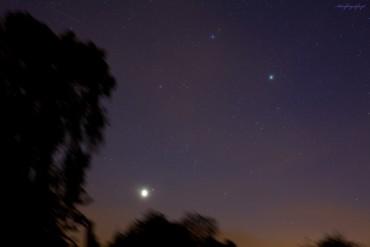 Wenus w gwiazdozbiorze Byka