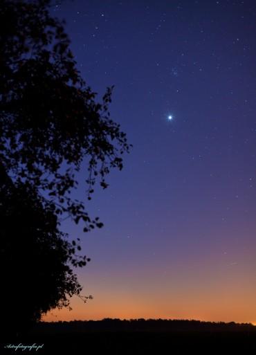 Poranna Wenus a tuż nad nią Żłóbek (M44)