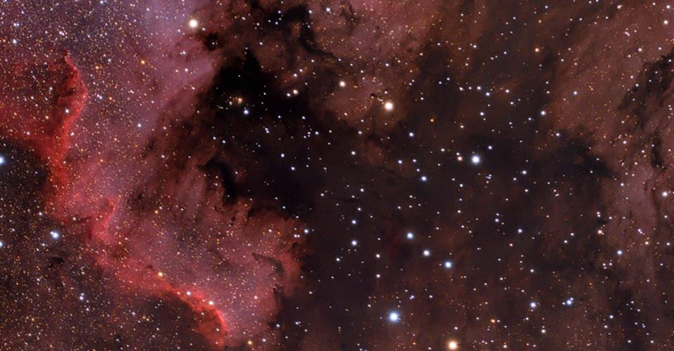 Ameryka – NGC7000